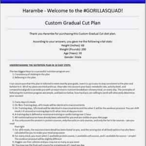 customized-nutrition-plan-3