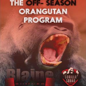 Off-Season Oragutan 1